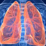 Kebiasaan Merokok Dapat Merusak Paru-paru, Begini Caranya