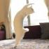 Aksi Kucing Yang Berdansa Seperti Penari Balet