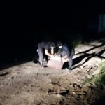 Sebuah Benda Diduga Bom Ditemukan di Jalan Merdeka Barat Lhokseumawe