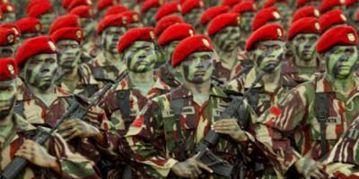 indonesia-tidak-butuh-bantuan-as-untuk-memburu-teroris-santoso