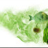 Jenis Makanan Pemicu Bau Mulut